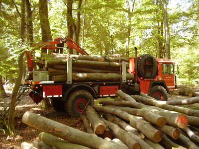 Holztransport m. Rungen 003.jpg